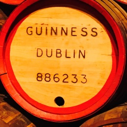 Dublin: the capital of the Irish   Chasing Krista   Dublin, Ireland