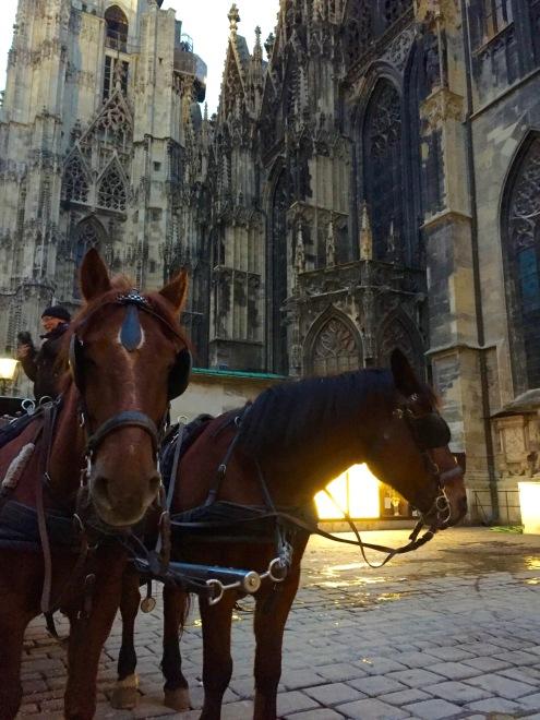 Vienna: a symphony of intellectuals | Chasing Krista | Vienna, Austria