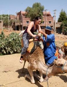 Bucket List   Chasing Krista   Morocco