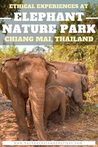 Three Days in Chiang Mai   Chasing Krista   Chiang Mai, Thailand